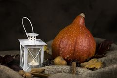 Autumn rustic still life with pumpkin, white lantern and dried l. Eaves royalty free stock photo
