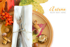 Autumn rustic table setting Stock Images