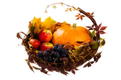 Autumn's basket Stock Photos