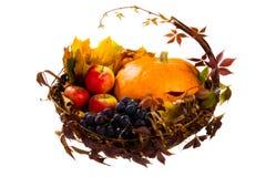 Autumn S Basket Stock Photos