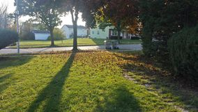 Autumn& x27;s Ground. Before walking in the house, this caught my attention Royalty Free Stock Images