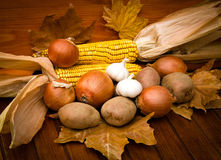 Autumn's harvest. Is on the table Stock Image