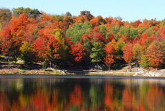 Autumn's landscape. Picture of a calm lake with colorful trees in the background Stock Image