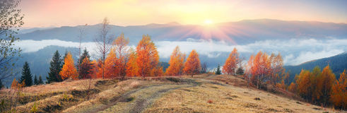 Autumn`s mystery. A beautiful morning panoramic scenery in the Ukrainian Carpathian mountains in the fall, with white fog flowing in between the hills and Royalty Free Stock Photo