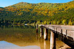Autumn at saint ana lake Royalty Free Stock Images