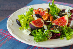 Autumn salad Royalty Free Stock Image