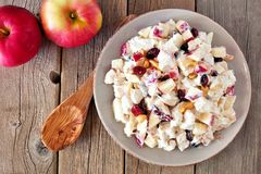 Autumn saladwith chicken, apples, nuts and cranberries, over wood Royalty Free Stock Image