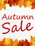 Autumn sale. Brown and gold autumn sale over white background. illustration Stock Photos