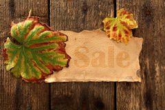Autumn sale Stock Image