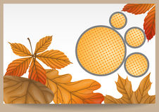 Autumn sale. Vector illustration. Eps 10 Royalty Free Stock Image