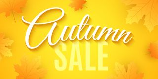 Autumn sale. Advertising banner. Invitation greeting card. 3D calligraphy and lettering. Red and orange maple leaves. Drop leaves. Vector illustration. EPS 10 royalty free illustration