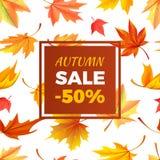 Autumn Sale -50 apagado en capítulo deja follaje Imagenes de archivo