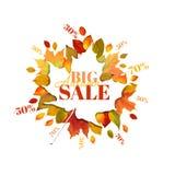 Autumn Sale - Autumn Leaves Background Photo libre de droits