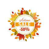 Autumn Sale - Autumn Leaves Background. Autumn Sale - Colorful Autumn Leaves Background - in vector Royalty Free Stock Images