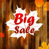 Autumn sale, autumn leaves background. plus EPS10 Royalty Free Stock Image