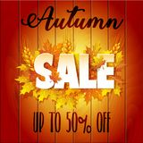 Autumn Sale. Banner for sale Stock Images