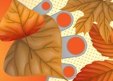 Autumn Sale Background Royaltyfria Foton