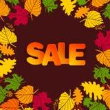 Autumn Sale Background Fotos de archivo