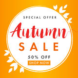 Autumn sale background banner. Autumn sale vector flyer template with lettering Special Offer 50% off shop now. Fall sale poster, card, label, banner design Royalty Free Stock Photo
