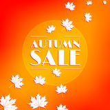 Autumn sale, background. Stock Image