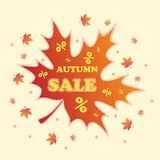 Autumn sale background Royalty Free Stock Image