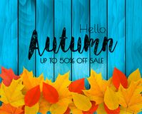 Autumn sale background with colorful leaves on wooden sign. Vector vector illustration