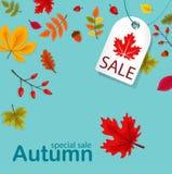 Autumn Sale Background com Autumn Leaves de queda ilustração stock