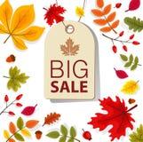 Autumn Sale Background con Autumn Leaves que cae Imagen de archivo libre de regalías