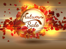 Autumn Sale background with copyspace. plus EPS10. Vector file Royalty Free Stock Image