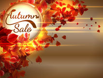 Autumn Sale background with copyspace. plus EPS10 Stock Photography