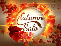 Autumn Sale background with copyspace. plus EPS10. Vector file Royalty Free Stock Photo