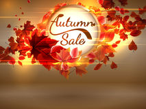 Autumn Sale background with copyspace. plus EPS10. Vector file Royalty Free Stock Photos