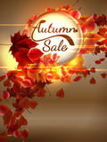 Autumn Sale background with copyspace. plus EPS10. Vector file Stock Images