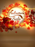 Autumn Sale background with copyspace. plus EPS10 Stock Photos