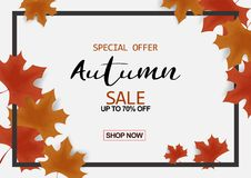 Autumn sale background decor with autumn maple leaves and frame. For brochure, leaflet, poster, banner. sale up to 70% off. Vector illustration EPS10 Stock Photo