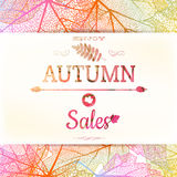 Autumn Sale Background Eps 10 Stock Foto