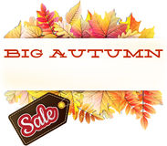 Autumn sale background. EPS 10 Stock Photos