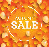 Autumn sale background with falling leaves and balloons. Stock Images