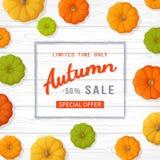 Autumn Sale Background Insecte de bannière dans un cadre rectangulaire avec les potirons colorés sur une table en bois blanche Of Illustration Libre de Droits