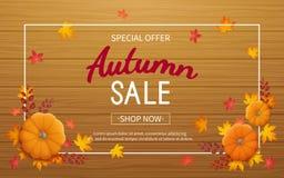 Autumn Sale Background Insecte horizontal de bannière dans un cadre rectangulaire avec le potiron, feuilles sur une table en bois Photos libres de droits