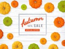 Autumn Sale Background Insecte horizontal de bannière dans un cadre rectangulaire avec les potirons colorés sur une table en bois illustration stock
