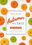 Autumn Sale Background Insecte vertical de bannière dans un cadre rectangulaire avec les potirons colorés sur une table en bois b illustration de vecteur