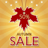 Autumn sale background with maple leaf and rays. Stock Photos
