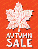 Autumn sale. Background with marple leaf shape Stock Photography