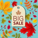 Autumn Sale Background mit fallendem Autumn Leaves Lizenzfreie Stockfotos