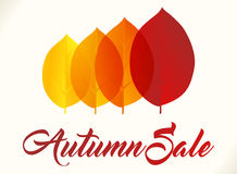 Autumn sale background Royalty Free Stock Image
