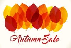 Autumn sale background Royalty Free Stock Photos