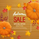 Autumn sale background in a rectangular frame with pumpkin, leaves on a wooden table. Discount, sale in autumn. Royalty Free Stock Image