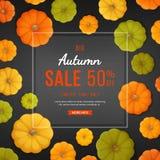 Autumn Sale Background Remise, vente en automne Insecte de bannière avec des potirons sur la texture noire Offre saisonnière spéc illustration stock