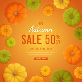 Autumn Sale Background Remise, vente en automne Insecte de bannière avec les potirons jaunes, verts, oranges sur un fond orange Illustration Stock
